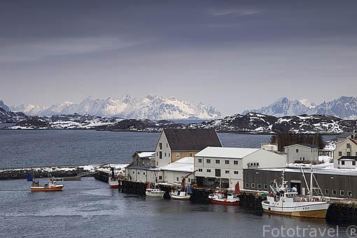 Puerto pesquero de HENNINGSVAER. Isla de Austvagoya. Archipielago de las Lofoten. Circulo Polar Artico. Noruega. / Norway