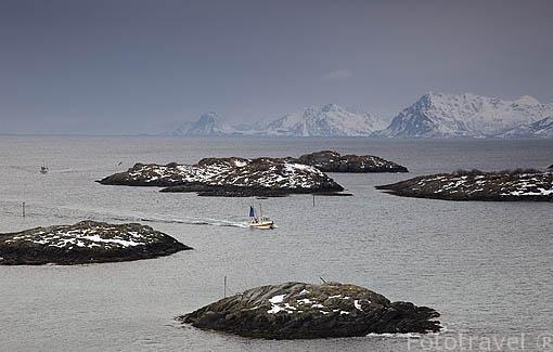 Barco pesquero cerca de la población de HENNINGSVAER. Isla de Austvagoya. Archipielago de las Lofoten. Circulo Polar Artico. Noruega. / Norway