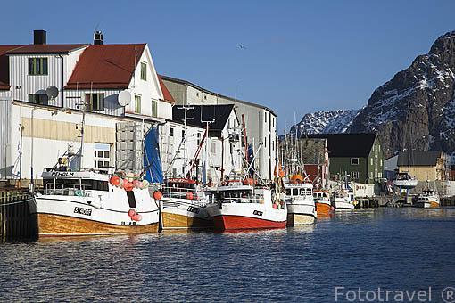 Barcos pesqueros en el puerto de la población de HENNINGSVAER. Isla de Austvagoya. Archipielago de las Lofoten. Circulo polar artico. Noruega / Norway