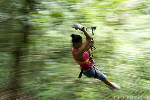 Canopy en el valle de Anton. PANAMA. Centroamerica