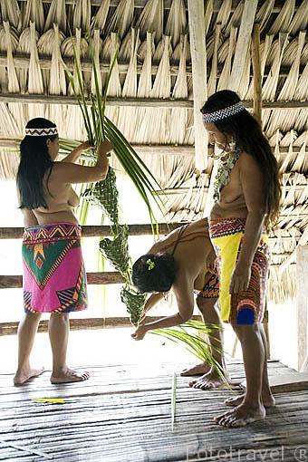 Elaboración de cesteria con hojas de palma. Tribu a Embera. PANAMA. Centroamerica