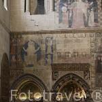 Sepulcros del s.XIII al XV en el brazo derecho del crucero y en el ábside de la epístola. Catedral Vieja. SALAMANCA. Ciudad Patrimonio de la Humanidad, UNESCO. Castilla y León. España
