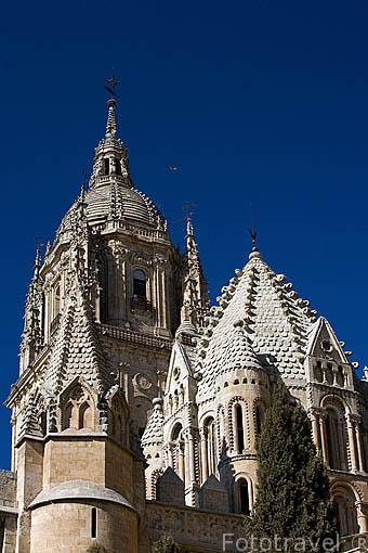 Torre del Gallo de la Catedral Vieja cubierta de escamas. SALAMANCA. Ciudad Patrimonio de la Humanidad, UNESCO. Castilla y León. España
