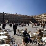 Terrazas en la plaza Mayor, de estilo barroco. S.XVIII. SALAMANCA. Ciudad Patrimonio de la Humanidad, UNESCO. Castilla y León. España