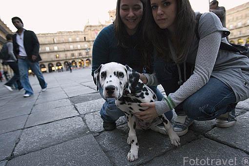 Chicas con perro dalmata en la plaza Mayor de SALAMANCA. Ciudad Patrimonio de la Humanidad, UNESCO. Castilla y León. España