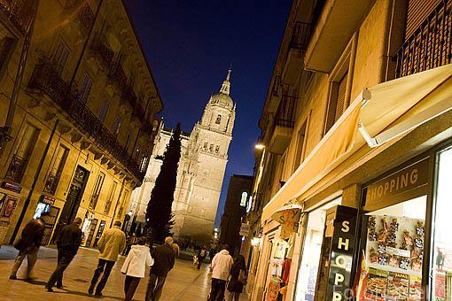 La calle de Cardenal Pla y Daniel. Al fondo la torre de la catedral Nueva. SALAMANCA. Ciudad Patrimonio de la Humanidad, UNESCO. Castilla y León. España
