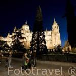 Plaza de Anaya y al fondo la catedral Nueva y Vieja. SALAMANCA. Ciudad Patrimonio de la Humanidad, UNESCO. Castilla y León. España
