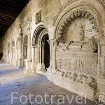 Claustro de la catedral Vieja. SALAMANCA.Ciudad Patrimonio de la Humanidad UNESCO.Castilla León. España