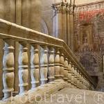Escaleras que dan acceso a la catedral Vieja. SALAMANCA.Ciudad Patrimonio de la Humanidad UNESCO.Castilla León. España
