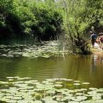 Chicos observando la fauna y flora junto a una de las charcas del Parque Natural del Cañon del rio Lobos. SORIA. Castilla y León. España