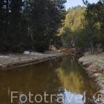 Parque Natural del Cañon del rio Lobos a su paso por la provincia de Burgos. España