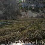 Rio Lobos. Parque Natural del Cañón del rio Lobos. Soria. España