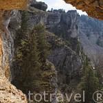 Vista desde lo alto de una de sus paredes calizas sobre el rio Lobos. Parque Natural del Cañón del rio Lobos. Soria. España
