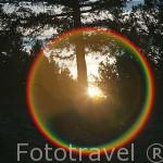 Parque natural del Cañon del rio Lobos. Soria. España