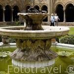 Fuente. Interior del claustro de la catedral. s.XII-XIV.TARRAGONA. Ciudad Patrimonio de la UNESCO. España