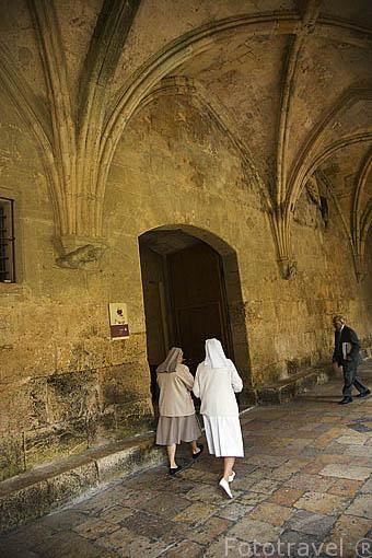 Interior del claustro de la catedral. s.XII-XIV.TARRAGONA. Ciudad Patrimonio de la UNESCO. España