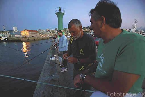 Pescadores en uno de los muelles del puerto de VIGO. Galicia. España