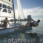 Veleros catamaranes de entrenamiento de la serie Hobie Cat junto a la playa de O Vao. Ria de VIGO. Galicia. España