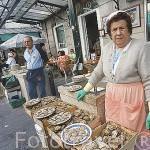 Vendiendo ostras en la calle de las Ostras / Pescaderia. Plaza de A Pedra. Ciudad de VIGO. Galicia. España