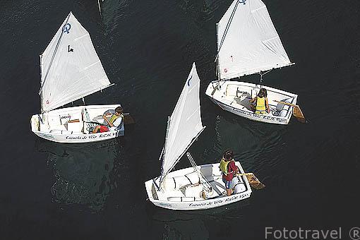 Jovenes entrenandose en sus embarcaciones de vela. Escuela de vela. Puerto deportivo y club nautico de la ciudad de VIGO. Galicia. España