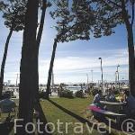 Pinares y piscinas para niños junto a la playa de Samil. VIGO. Galicia. España