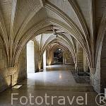 Interior del Convento des Recollets, s.XVII. Convertido en pequeño centro comercial. Ciudad de COGNAC. Francia