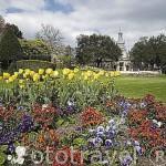 Jardin publico, en su interior se encuentra el Ayuntamiento de la ciudad de COGNAC. Francia