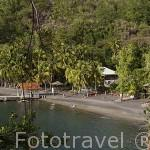 Playa de Anse Noire. Zona del Sur oeste de la isla de MARTINICA. Francia. Caribe