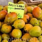 Mangos. Pequeño mercado en la ciudad de Fort de France. Isla de MARTINICA. Caribe. Francia
