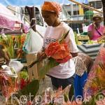 Flores a la venta. Pequeño mercado de Asile en la ciudad de Fort de France. Isla de MARTINICA. Caribe. Francia