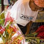 Pequeño mercado en la ciudad de Fort de France. Isla de MARTINICA. Caribe. Francia