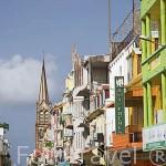 Calle de Schoelcher. Ciudad de Fort de France. Isla de MARTINICA. Caribe. Francia