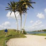 Campo de Golf de la Martinique. Zona de Les Trois Islets. Isla de MARTINICA. Caribe. Francia