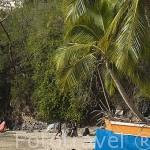 Playa en la cala de Anse Dufour. Al sur oeste. Isla de MARTINICA. Caribe. Francia