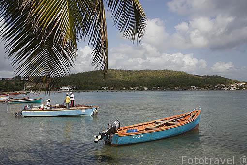 Pescadores en la playa de TARTANE, zona de la Caravelle. Este de la isla de Martinica. Francia. Caribe