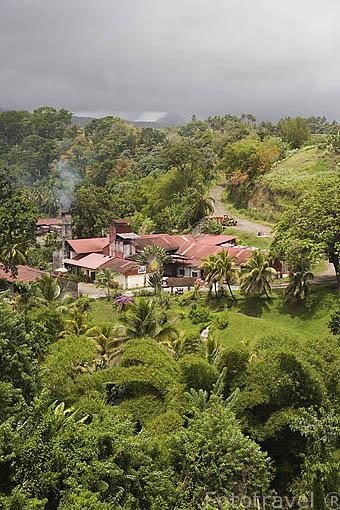 Destileria de Ron J.M. desde 1845. Cerca de GRAND RIVIERE, al norte de la isla de Martinica. Francia. Caribe
