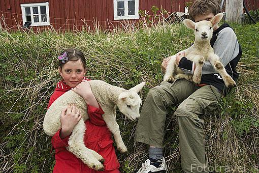 Los jovenes Elisabeth y Steffen con unos corderos con pocas semanas de vida. Cerca de NES. isla de Vega. Patrimonio de la Unesco. Noruega MR.074