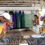 Turistas realizando un recorrido por la granja de Gauguin´s Pearl. Atolon de RANGIROA. Archipielago de Tuamotu. Polinesia Francesa.