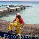 Trabajadores llegando al muelle con cargamento de ostras perliferas recien sacadas del agua. Granja de Gauguin´s Pearl. Atolon de RANGIROA. Archipielago de Tuamotu. Polinesia Francesa.