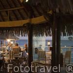 Restaurante bar del hotel Novotel Beach Rangiroa. Atolon de RANGIROA. Archipielago de Tuamotu. Polinesia Francesa. Oceano Pacifico