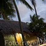 Bungalows. Hotel Novotel Beach Rangiroa. Atolon de RANGIROA. Archipielago de Tuamotu. Polinesia Francesa. Oceano Pacifico