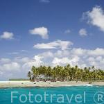 Palmeras e islotes o motus en la Laguna Azul. Atolon de RANGIROA. Archipielago de Tuamotu. Polinesia Francesa. Oceano Pacifico