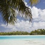 Palmeras en los islotes (motus), Laguna Azul. Atolon de RANGIROA. Archipielago de Tuamotu. Polinesia Francesa. Oceano Pacifico