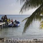 Descargando el equipo de buceo en el muelle. Agencia de buceo Top Dive. Cerca de la población de TIPUTA. Rangiroa. Archipielago de Tuamotu. Polinesia Francesa. Oceano Pacifico