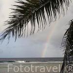 Arcoiris sobre la costa del atolón de RANGIROA. Archipielago de Tuamotu. Polinesia Francesa. Oceano Pacifico