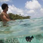 Peces de colores se congregan junto a los corales que se encuentran en los atolones de la Polinesia Francesa. Oceano Pacifico