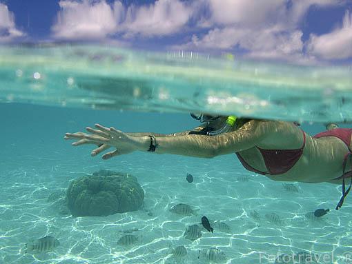 Nadando en las aguas claras de la Polinesia Francesa. Isla de RANGIROA. Oceano Pacifico