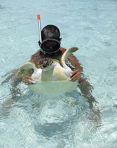 Chico y tortuga verde. Atolón de RANGIROA. Archipielago de Tuamotu. Polinesia Francesa. Oceano Pacifico