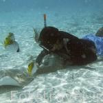 Submarinista jugando con una raya