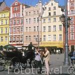 Fachadas de casas renacentistas en la plaza del Mercado (S.XIV). Ciudad de WROCLAW. Silesia. Polonia